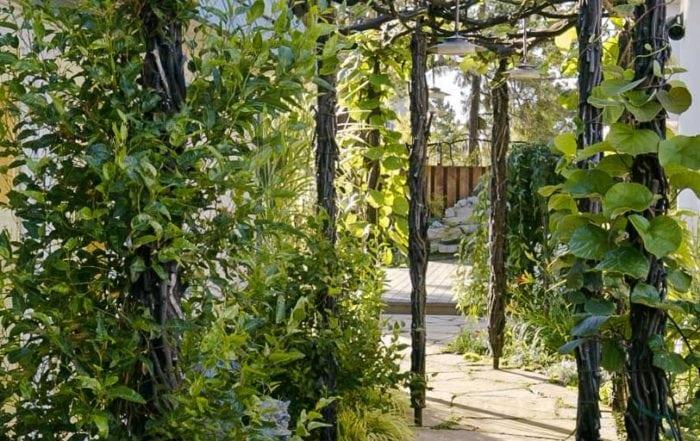 Garden trellis / Alameda