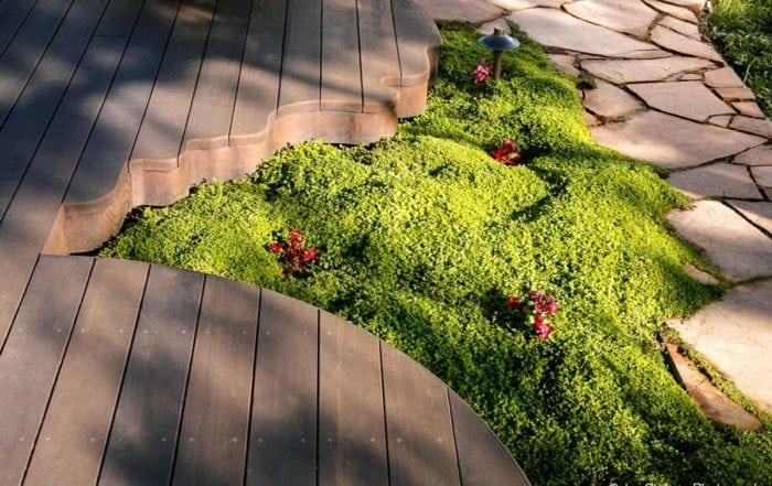 Curved deck detail / Alameda