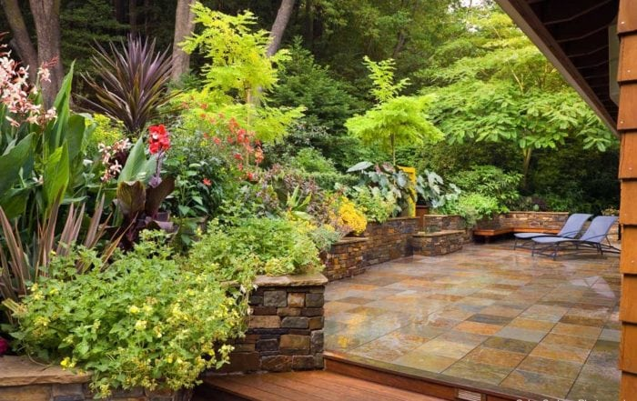 Natural stone patio and garden / San Rafael