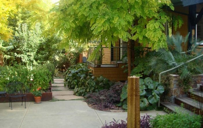 Garden & hardscape / San Anselmo